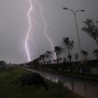 Lightning strikes in Poyang county in Jiujiang