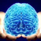 5 WAYS TO INCREASE BRAIN ACTIVITY image