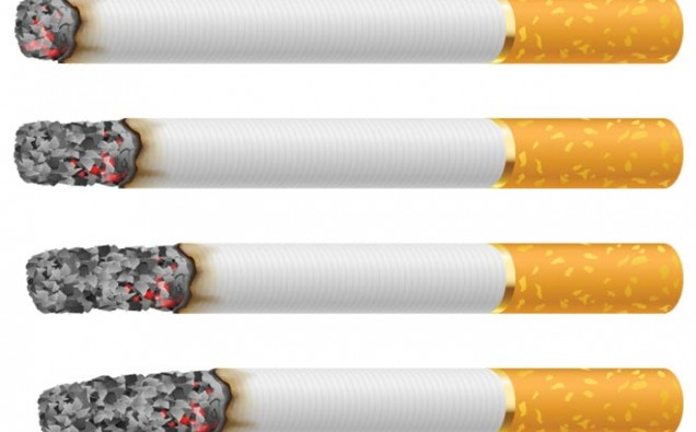 812-Vector-cigarettess-smoking-stages (1)