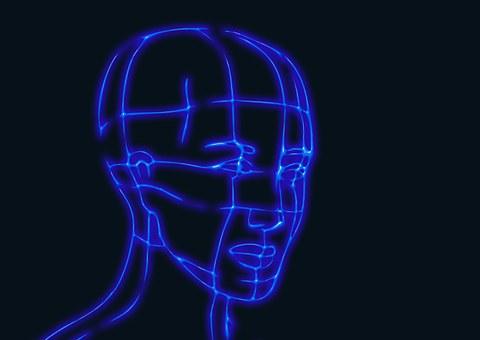 head-625666__340