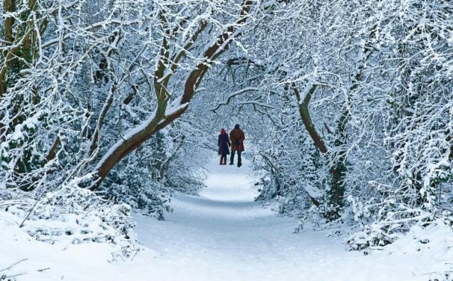 landscape-1479129881-snow-walk