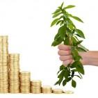 money-4867813_640